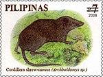 Archboldomys kalinga 2008 stamp of the Philippines.jpg