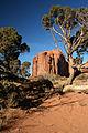 Arizona 915-A (3689287323).jpg