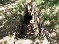 Armeni Friedhof 27.JPG