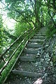 Arreton Down steps 2.JPG