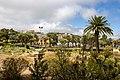 At Tenerife 2020 751.jpg