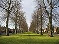Avenue, Beverley Road - geograph.org.uk - 94547.jpg