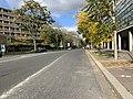 Avenue Pierre Coubertin - Paris XIII (FR75) - 2020-10-15 - 1.jpg