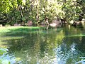 Babinda Boulders - swimming hole.jpg