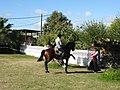 Baile - P1320246.jpg