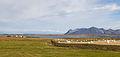Balas de paja, Akranes, Vesturland, Islandia, 2014-08-14, DD 018.JPG