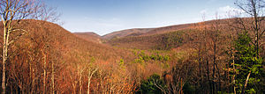 Bald Eagle State Forest - Bald Eagle State Forest vista from Pine Swamp Road in Centre County
