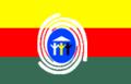 Bandeira Araguaina.png