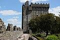 Battlements, Blarney Castle, House & Gardens, Blarney (506720) (28188210710).jpg