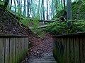 Baumsturz im Bergwald - panoramio.jpg