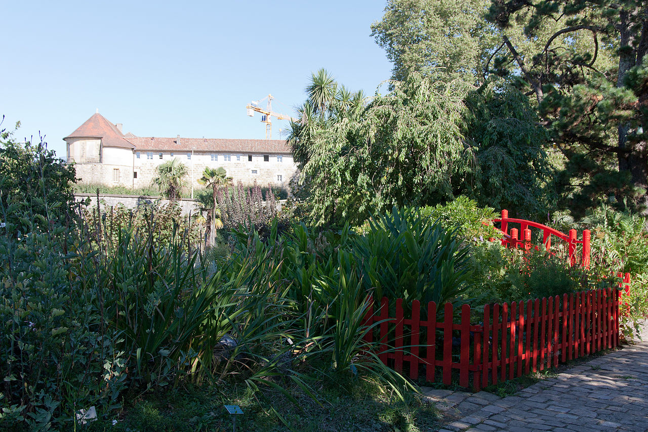 File bayonne jardin botanique wikimedia commons for Entretien jardin bayonne