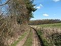 Bedlam Lane, Staveley. - geograph.org.uk - 372819.jpg