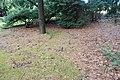 Begraafplaats Veldwijk (30954118575).jpg