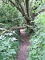 Belvidere Road, Exeter - geograph.org.uk - 1403140.jpg
