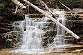 Bemis Falls, Arethusa Falls Trail, Hart's Location (494255) (11925183916).jpg
