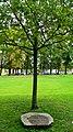 Berlin Eiche - panoramio.jpg