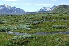Tal des Bierikjåhkå im Sarek-Nationalpark mit Blick nach Südwesten