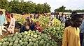 Birniwa water melon market.jpg