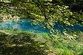 Blaubeuren Blautopf 20180804 01.jpg