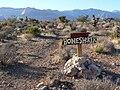 Blue Diamond Hill Boneshaker 1.jpg