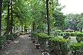 Bodhgaya (8717524498).jpg