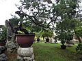 Bonsai Garden in Zhuozhengyuan Garden.JPG