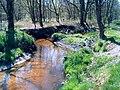 Bosbeekvallei in Opoeteren.JPG