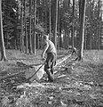 Bosbewerking, arbeiders, boomstammen, gereedschappen, Bestanddeelnr 251-7929.jpg