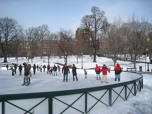 Boston Common Frog Pond - IMG 8279