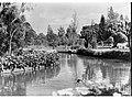 Botanic Gardens(GN05675).jpg