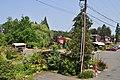 Bothell, WA - Country Village 51.jpg