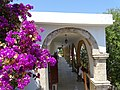 Bougainvilea with Archway - Lapta (Lapithos) - Turkish Republic of Northern Cyprus (28526598472).jpg