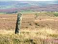 Boundary Stone, Brown Hill - geograph.org.uk - 40060.jpg