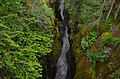 Box Canyon of the Cowlitz, Mount Rainier National Park 01.jpg