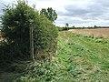 Bridleway near Sigglesthorne Grange - geograph.org.uk - 1463703.jpg
