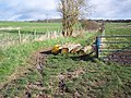 Bridleway with log barrier near Barford St Martin - geograph.org.uk - 350573.jpg