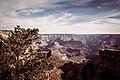Bright Angel Trail, South Rim, Grand Canyon (30406645872).jpg