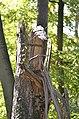 Broken tree 05.jpg
