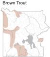 BrownTroutDistributionMapYNP.png