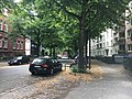 Brucknerstraße.jpg
