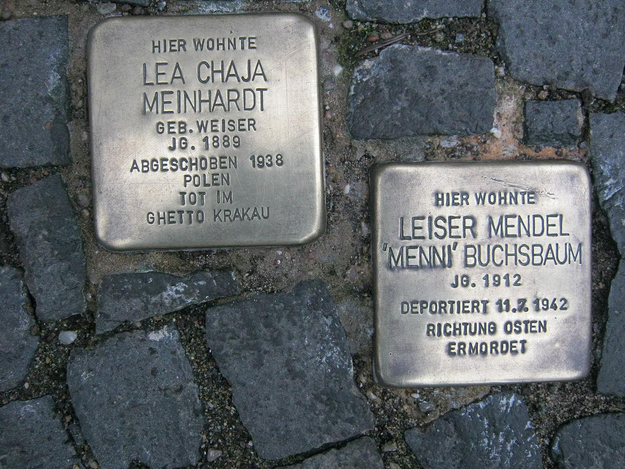 Buchseaum&Meinhardt.jpg