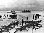 Bulldozer clears path during Operation Highjump c1947.jpg