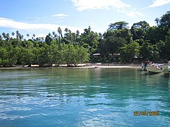 Bunaken wikipedia - Raja laut dive resort ...