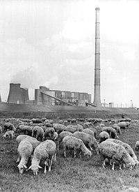 Bundesarchiv Bild 183-M0518-0002, Thierbach, Blick aufs Kraftwerk.jpg