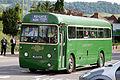 Bus (1303142938).jpg