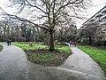 Bushy Park, Dublin -146424 (45754685214).jpg