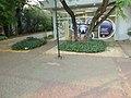 C51 - panoramio.jpg