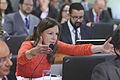 CAE - Comissão de Assuntos Ecômicos (20440897874).jpg