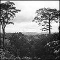 CH-NB - Belgisch-Kongo, Thysville (Mbanza Ngungu)- Landschaft - Annemarie Schwarzenbach - SLA-Schwarzenbach-A-5-26-014.jpg