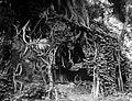 COLLECTIE TROPENMUSEUM Krankzinnige wonend in een hol onder de wortels van een boom TMnr 10006762.jpg